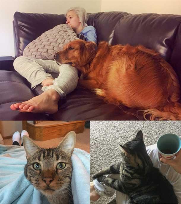 Katie's pets